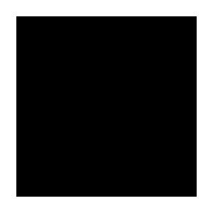 pagnussat-FAVICON